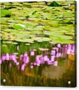 Reflected Flowers And Lilies Acrylic Print