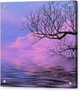 Reflecting On Life Acrylic Print