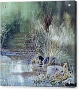 Reflecting On A Misty Morning Acrylic Print