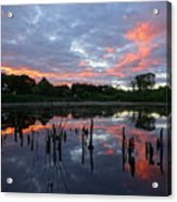 Reflecting The Day Acrylic Print
