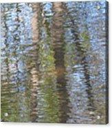 Reflecting Trees Acrylic Print