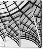 Reflection II Acrylic Print