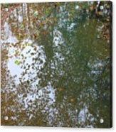 Reflection In Stream Acrylic Print