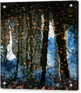 Reflection 3 Acrylic Print