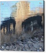 Reflection Of Dogs Acrylic Print