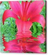 Reflection Of Life  Acrylic Print