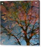 Reflection Of Self Acrylic Print