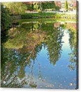 Reflection Of Trees Acrylic Print