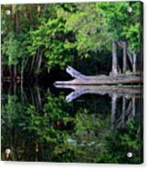 Reflection Off The Withlacoochee River Acrylic Print