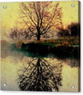 Reflection On Golden Pond Acrylic Print