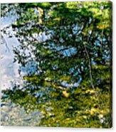 Reflection Pool Acrylic Print