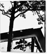 Reflection Study Acrylic Print