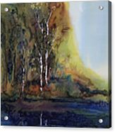 Reflections Acrylic Print by Carolyn Doe