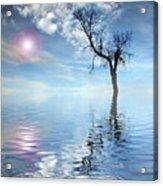 Reflection's Acrylic Print