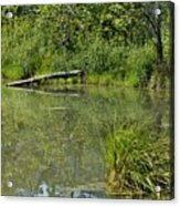 Reflections In The Pond Acrylic Print