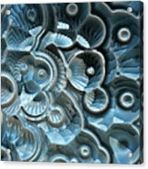 Reflections Of A Fractal Fossil Acrylic Print