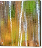 Reflections Of The Canadian Fall Acrylic Print
