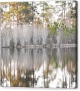 Reflections Of The South Acrylic Print