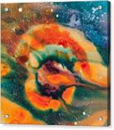 Reflections Of The Universe No. 2051 Acrylic Print