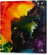 Reflections Of The Universe No. 2318 Acrylic Print