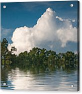 Reflections Of Trees And Clouds Acrylic Print
