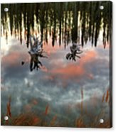 Reflections Off Pond In British Columbia Acrylic Print