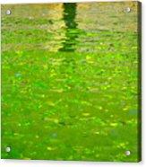 Reflections On Cambridge Acrylic Print