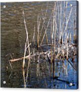 Reflections On The Yellow River Acrylic Print