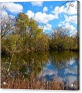 Reflective Cloudy Palatine, Il,  Library Pond Acrylic Print