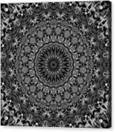 Regalia Black And White No. 4 Acrylic Print