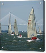Regatta In Charleston Harbor Acrylic Print