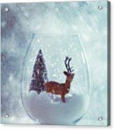 Reindeer In Glass Snow Globe  Acrylic Print