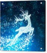 Reindeer Stars Acrylic Print