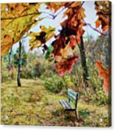 Relax And Watch The Leaves Turn Acrylic Print