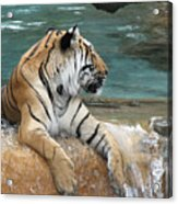 Relaxing Bath Acrylic Print