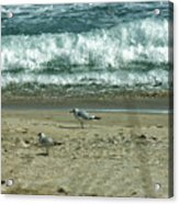 Relaxing By The Ocean Acrylic Print