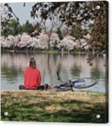 Relaxing Under Cherry Blossoms Acrylic Print