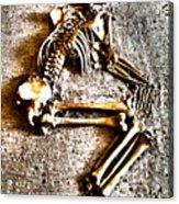 Remains ... Acrylic Print