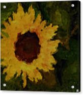 Remembering Van Gogh Acrylic Print
