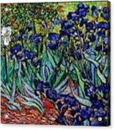replica of Van Gogh irises Acrylic Print