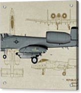 Republic A-10 Thunderbolt II - Profile Art Acrylic Print