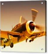 Republic P-47 Thunderbolt 2011 Chino Air Show Acrylic Print