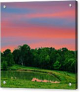 Restful Afternoon Acrylic Print by Jan Amiss Photography