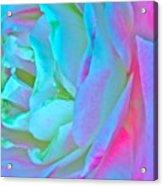 Restless Romantic Acrylic Print