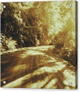 Retro Rainforest Road Acrylic Print