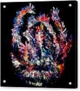 Retrograde Acrylic Print