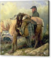 Returning From The Hill Acrylic Print by Richard Ansdell