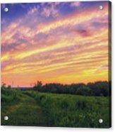 Retzer Nature Center - Summer Sunset #4  Acrylic Print