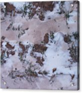 Reversing The Roles - Soil Dusting A Crispy Snow Acrylic Print
