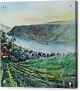 Rhine Valley Acrylic Print